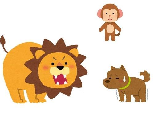ライオンと犬とサル00