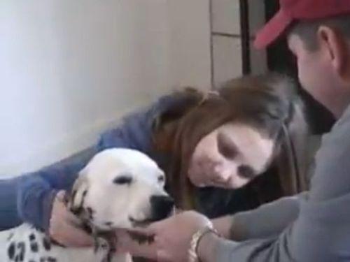 隣の犬がニッコリ01