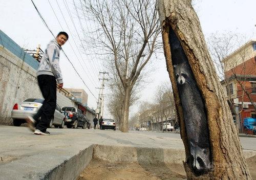 木の幹に絵を描くアート09