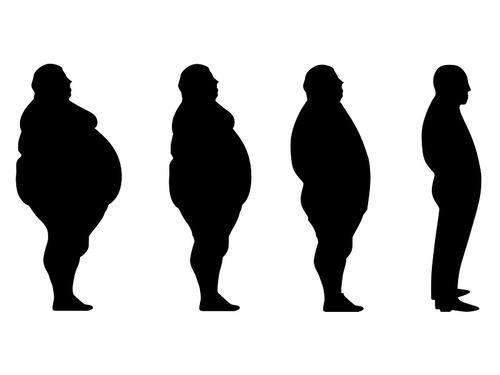 BMI(ボディマス指数)