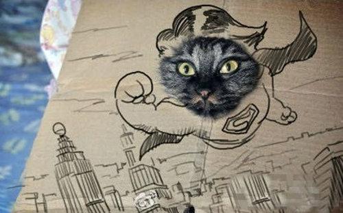 ダンボール猫アート08
