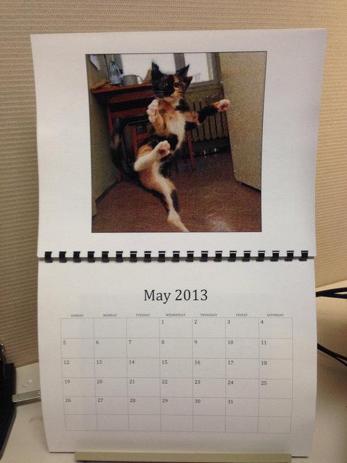 猫のカレンダー05