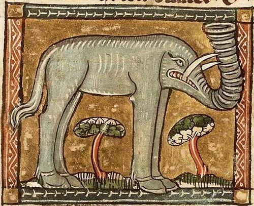中世の想像で描かれたゾウ01