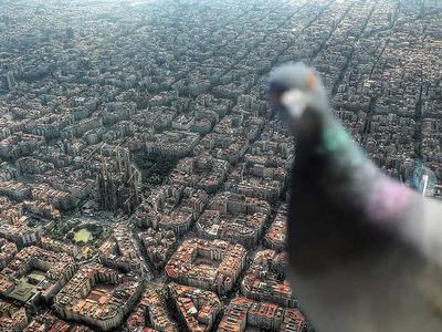 バルセロナ03
