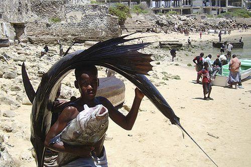 ソマリアの魚釣り16