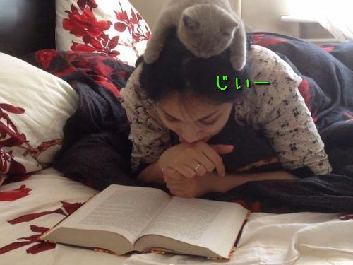 読書猫00