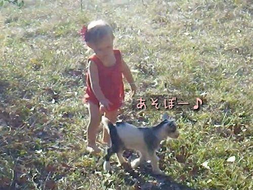 子ヤギと幼女00