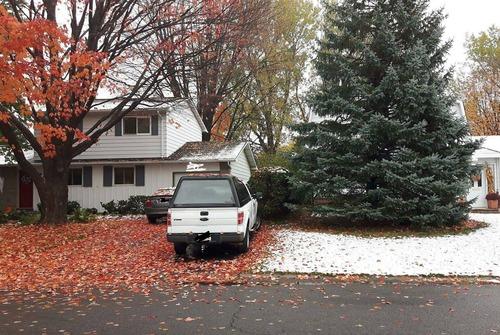隣の家は明らかに季節が違う01
