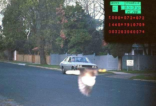 スピード違反を鳥が救ってくれた01