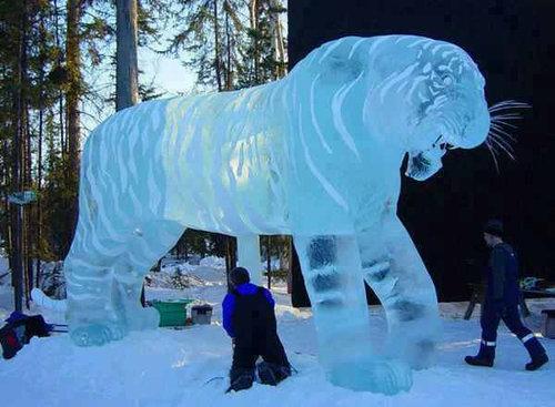 08雪や氷や氷点下の冬の写真画像