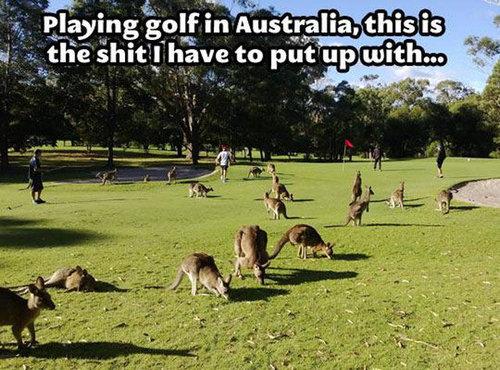 そのころオーストラリアでは15