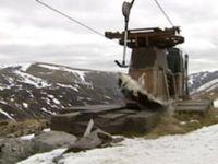 スキーのリフトにぶら下がる犬01