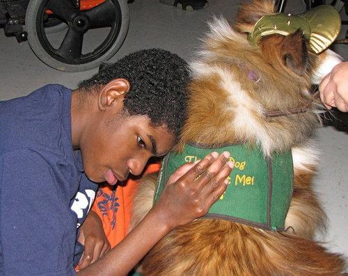 セラピー犬15
