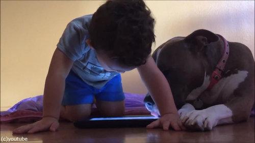 弟と犬とiPad06