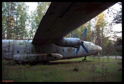 森に捨てられたロシアの輸送機07