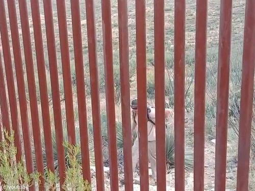 アメリカとメキシコの国境を超える簡単な方法00