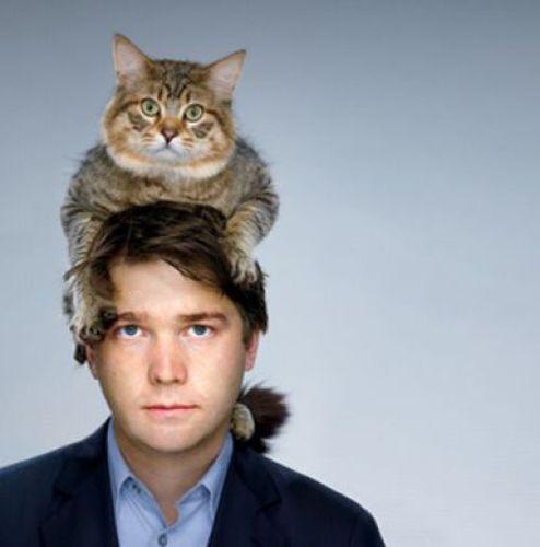 猫を頭乗せ14