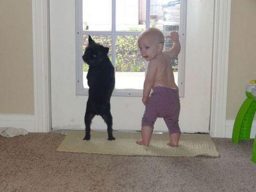 ペットと赤ちゃん00
