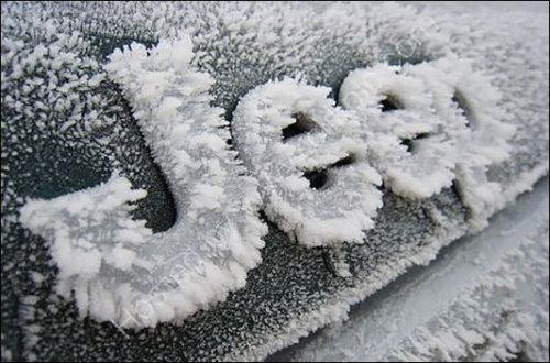 信じられない凍り方13