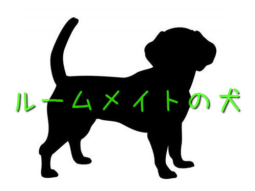 ルームメートと犬00