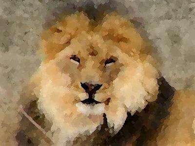 ライオンと子供00