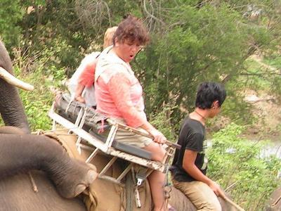 ゾウのハプニング00