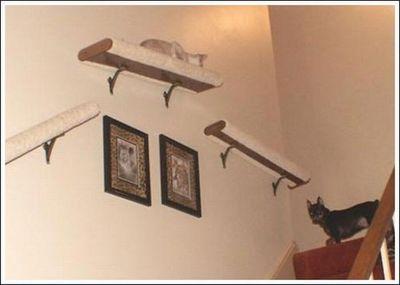 猫用の足場11