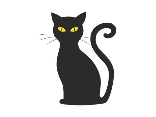うちの猫のコスプレをしたら00
