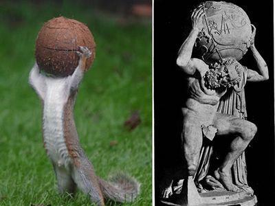 ギリシャ神話の神「アトラス」のようなリス