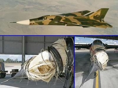 ペリカンと激突したF-111戦闘機01