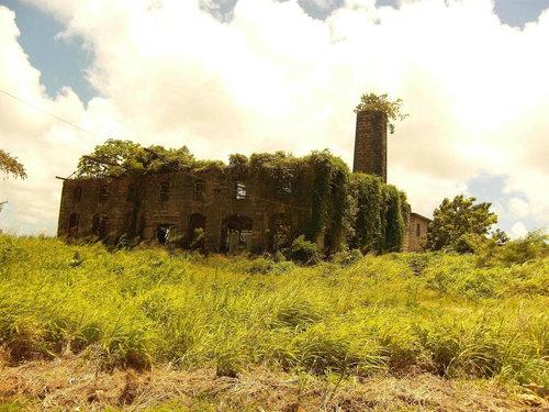 美しい廃墟17