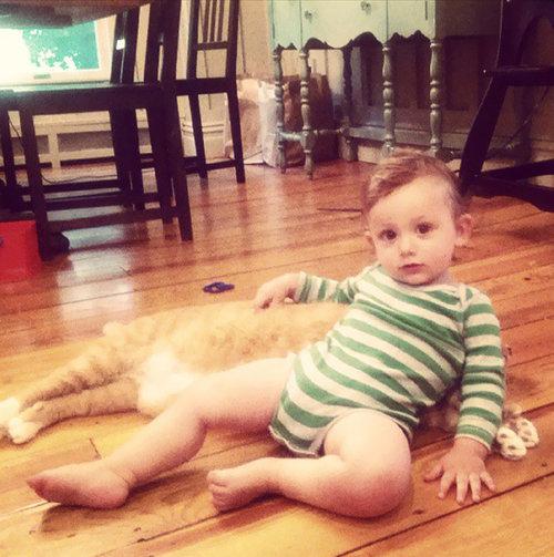 赤ちゃんの育ての親は猫05