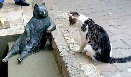 クールな猫の銅像が建つ08