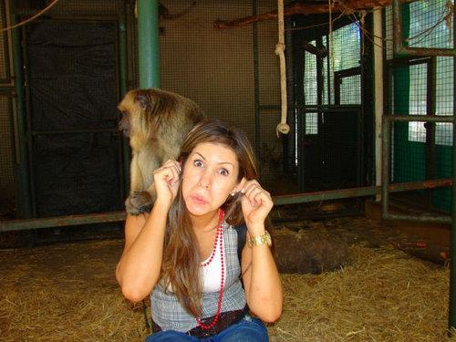 ルハン動物園11