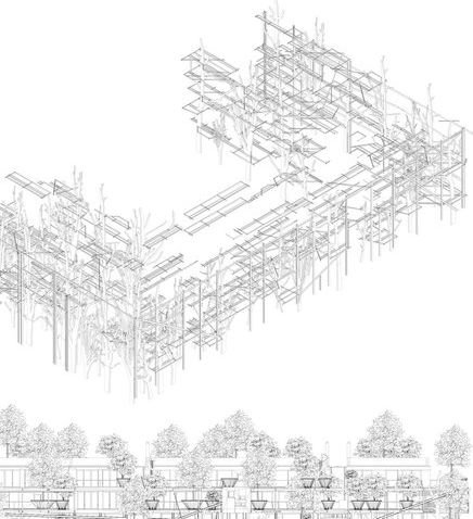 150本の木を所持するアパート07