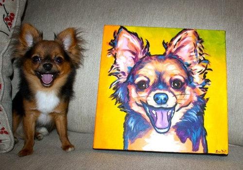 うれしそうな犬たち08