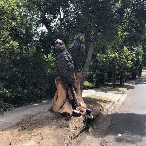 倒木とご近所さん01