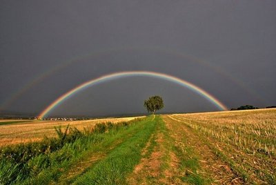 美しい虹13