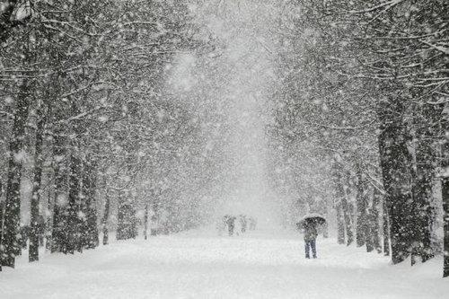 ヨーロッパの大寒波20