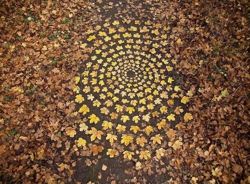 葉っぱや石を並べたアート06