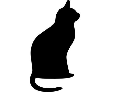 逃走犯と猫00