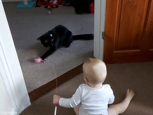 猫を操る赤ちゃん04