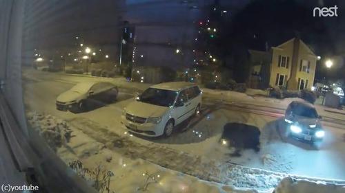 雪の駐車場で偶然できたもの02