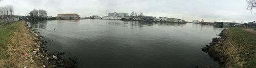 オランダの川辺をゴミ掃除01