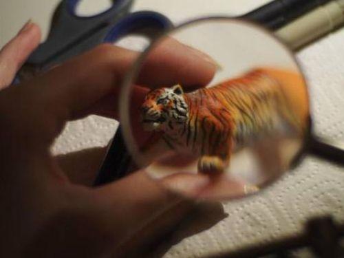 虎のフィギュア07