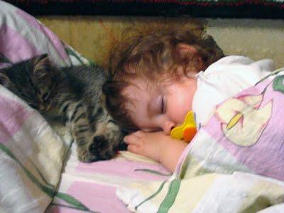 赤ちゃんとペット02