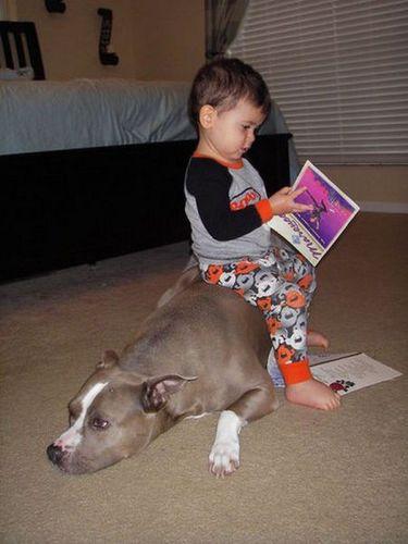 ペットと赤ちゃん02