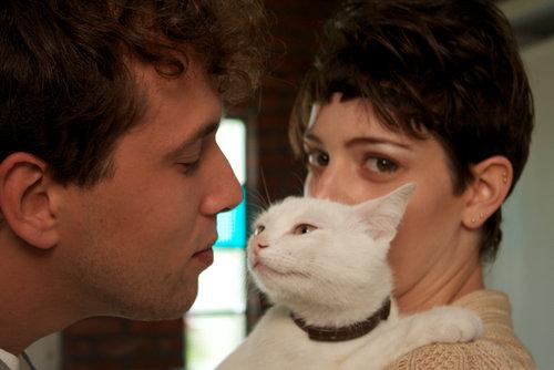 猫が嫉妬01