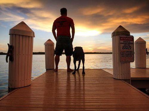余命半年の愛犬と旅行00