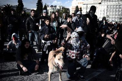 ギリシャの暴動犬01